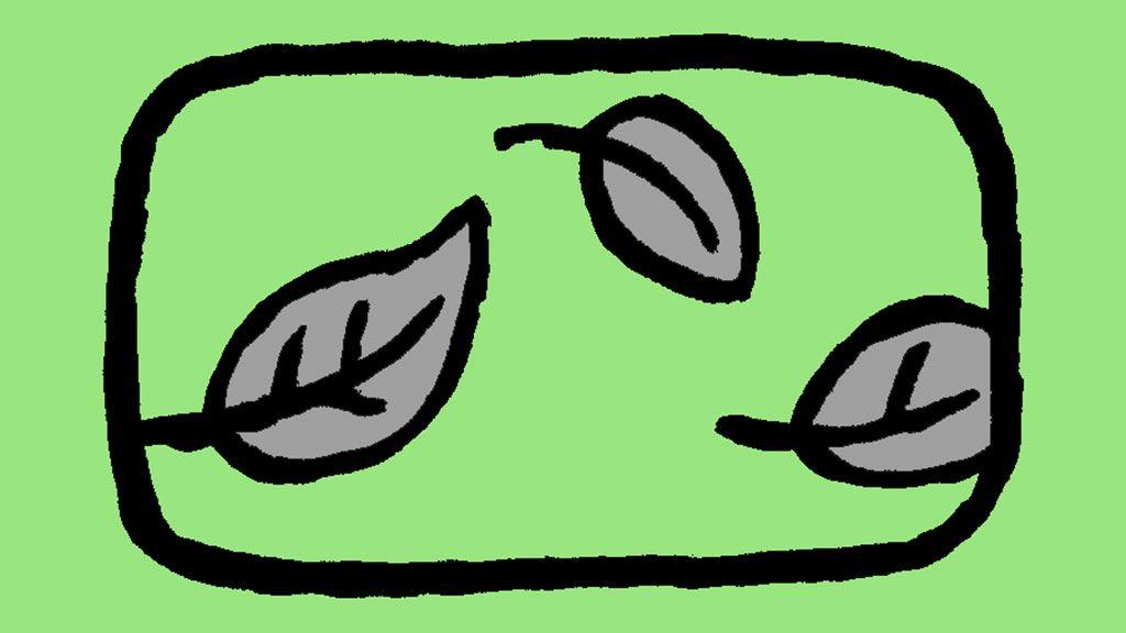 月 7 四緑 2020 木星